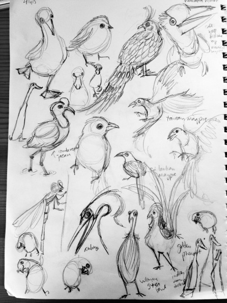 so many birds.