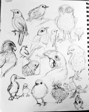 lots of birds