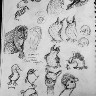 owls, booby, alpacas, goats, etc!
