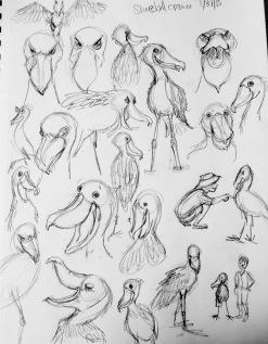 shoebill cranes