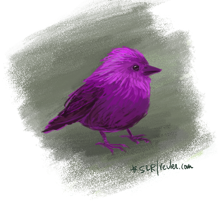 purple_bird
