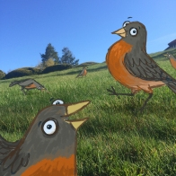 day9_robins