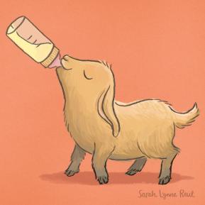 SarahLynneReul_Farm_GoatHappy_slr