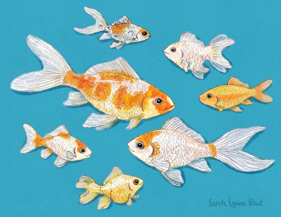 SarahLynneReul_FishPortraits_slr